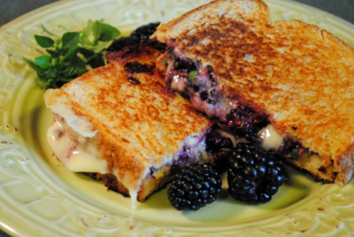 Fontina Blackberry Basil Grilled Cheese